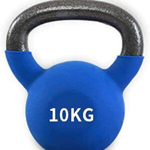 Max Strength 10kg Coated KettleBell prfessional Kettle Bell Weights for Women Men - Solid Cast Iron Weights